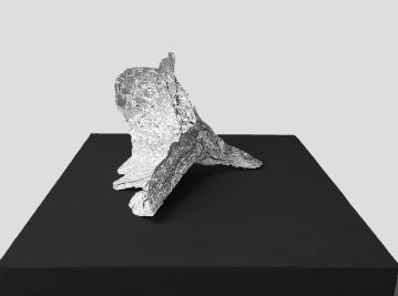 Disbelief 01, 2017,foil,cm 14x18x22