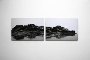 DBL Iceberg,2017, print on aluminium, diptych, cm.67x45 (each)